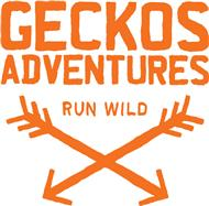 Geckos-Adventures